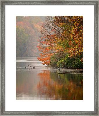 Autumn - Lake Logan Framed Print