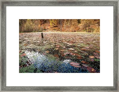 Autumn - 10 Framed Print by Okan YILMAZ