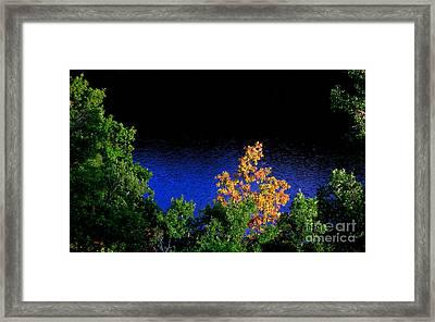 Autumn 5 Framed Print by Vassilis Tagoudis