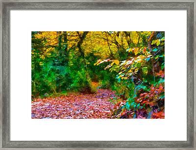 Autumn - 6 Framed Print by Okan YILMAZ