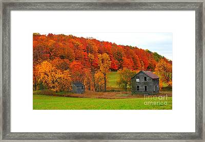 Framed Print featuring the photograph Autumn Abandoned by Terri Gostola