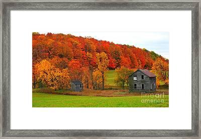 Autumn Abandoned Framed Print by Terri Gostola