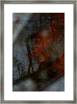 Framed Print featuring the photograph Autumn Abstract by Photographic Arts And Design Studio