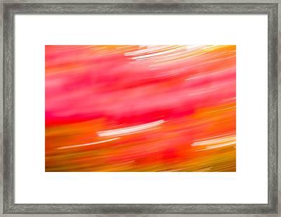 Autumn Abstract Framed Print by Shane Holsclaw