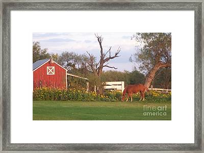 Autumn Abundance Framed Print