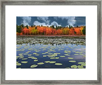 Autumn Across The Pond Framed Print