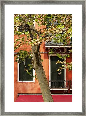 Autumn Almost Here Framed Print