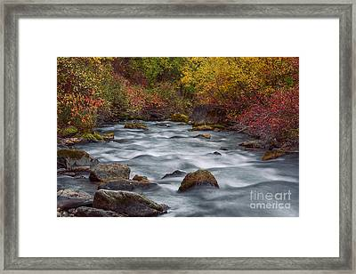 Autumn Along Palisades Creek In Idaho Framed Print