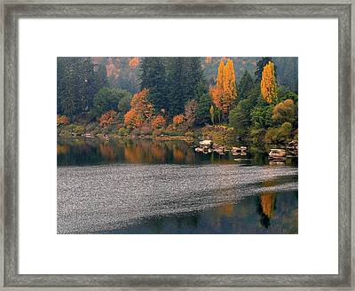 Autumn Along The Umpqua Framed Print by Suzy Piatt