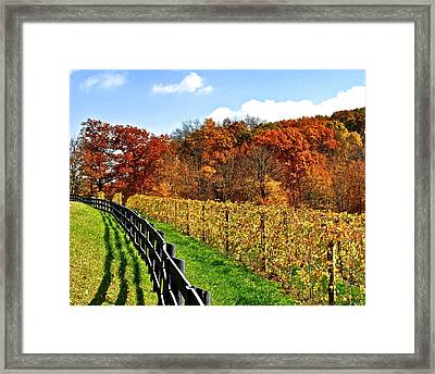 Autumn Amish Vineyard Framed Print by Frozen in Time Fine Art Photography