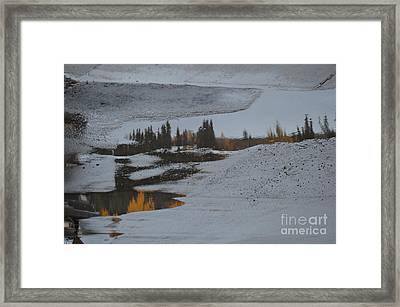 Autumn Arising Framed Print