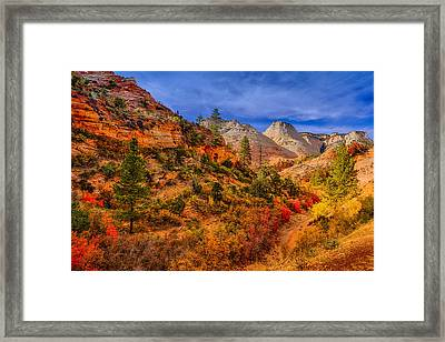 Framed Print featuring the photograph Autumn Arroyo by Greg Norrell