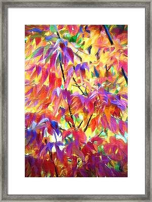 Autumn Ash Tree 1 - Fall Paint Framed Print by Steve Ohlsen