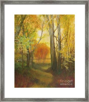 Autumn Aspen Grove Framed Print by Sue Cervenka