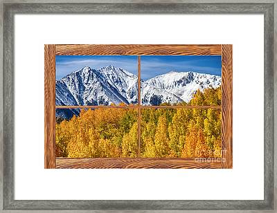 Autumn Aspen Tree Forest Barn Wood Picture Window Frame View Framed Print by James BO  Insogna