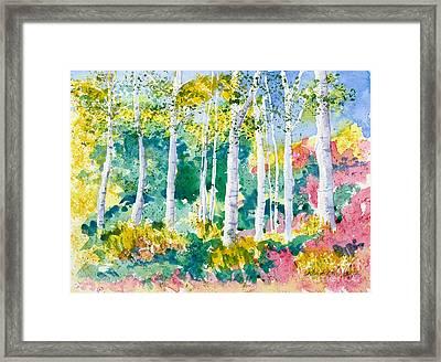 Autumn Aspen Framed Print
