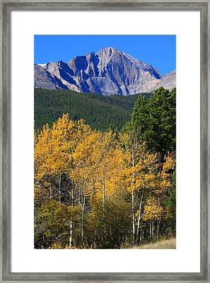 Autumn Aspens And Longs Peak Framed Print