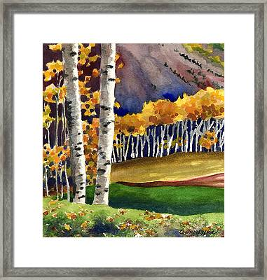 Autumn Aspens Framed Print by Anne Gifford