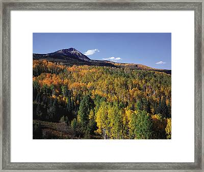 Autumn At Big Baldy Framed Print