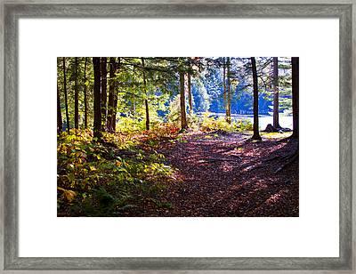 Autumn At Cary Lake Framed Print