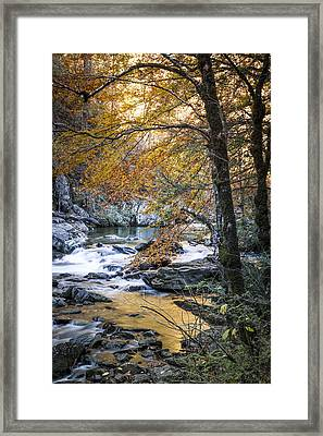 Autumn At Citico Creek Framed Print
