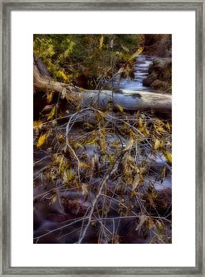 Autumn At Eight Mile Creek Framed Print by Ellen Heaverlo