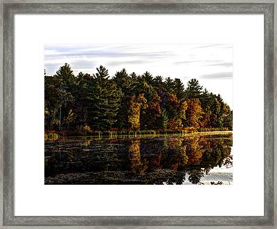 Autumn At It's Finest 2 Framed Print by Thomas Young