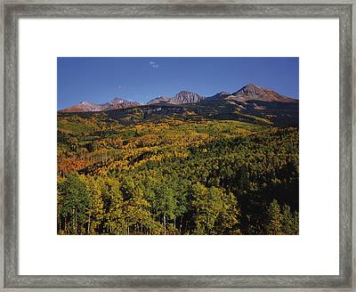 Autumn At Mt. Wilson Framed Print