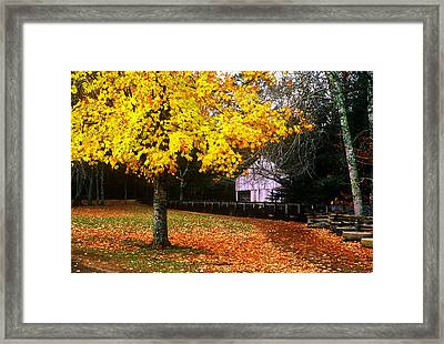 Framed Print featuring the photograph Autumn At Old Mill by Rodney Lee Williams