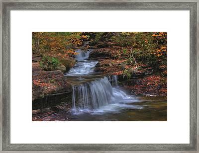 Autumn At Ricketts Glen Framed Print