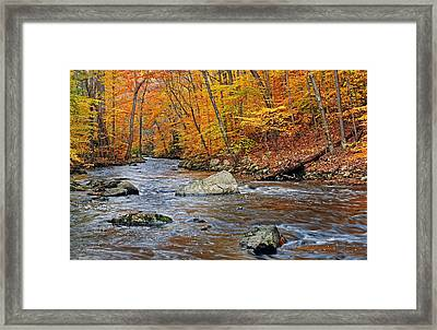 Autumn At The Black River Framed Print