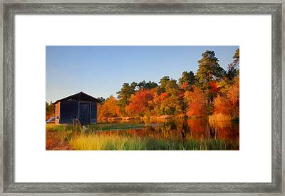 Autumn At The Bog Framed Print by Beth Sawickie