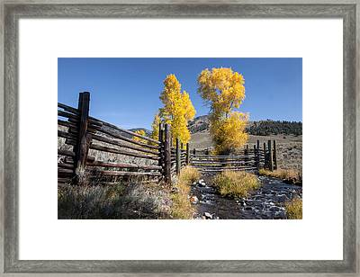 Framed Print featuring the photograph Autumn At The Lamar Buffalo Ranch by Jack Bell