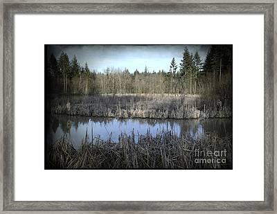 Autumn. Auvergne. France Framed Print by Bernard Jaubert
