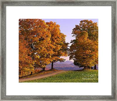 Autumn Backroad View Framed Print
