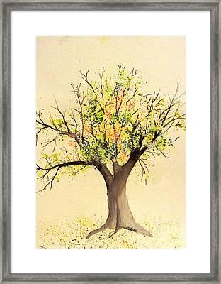 Autumn Backyard Tree Framed Print