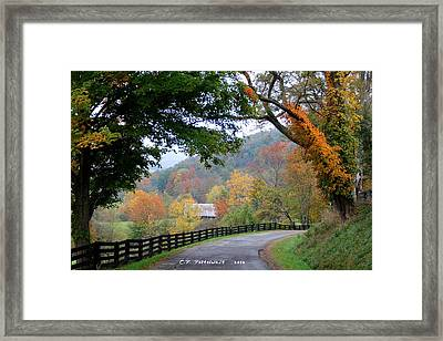 Autumn Beauty Around The Bend Framed Print by Carolyn Postelwait