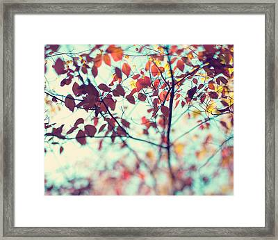 Autumn Beauty Framed Print by Kim Fearheiley