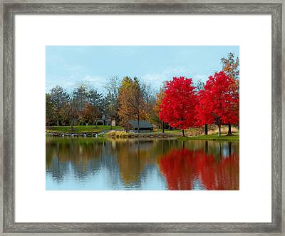 Autumn Beauty On A Pond Framed Print