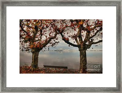 Autumn Bench Framed Print by Caroline Pirskanen