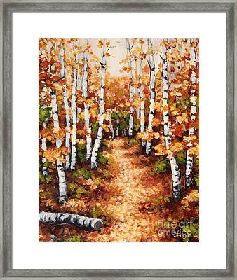 Autumn Birch Trail Framed Print