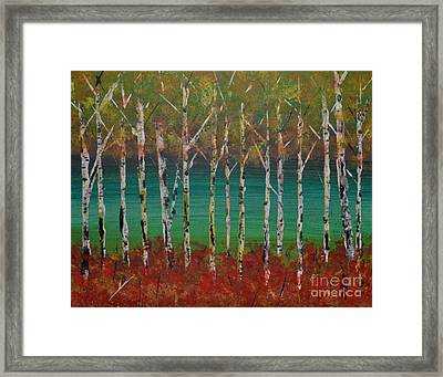 Autumn Birches Framed Print