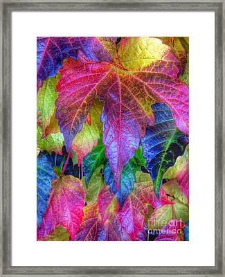 Autumn Bold Framed Print by Susan Garren