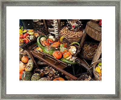 Autumn Bounty Framed Print by Rae Tucker