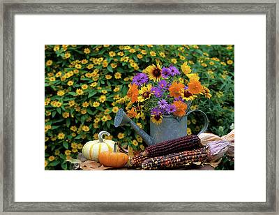 Autumn Bouquet, Asters, Cosmos Framed Print by Richard and Susan Day