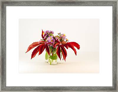 Autumn Bouquet Framed Print by Torbjorn Swenelius