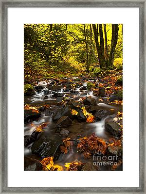Autumn Breeze Framed Print