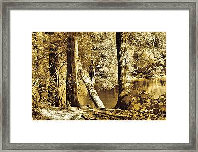 Autumn Breeze  Framed Print by Thomas  MacPherson Jr