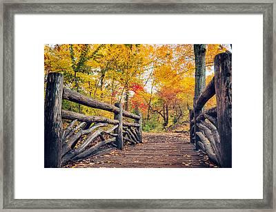 Autumn Bridge - Central Park - New York City Framed Print by Vivienne Gucwa