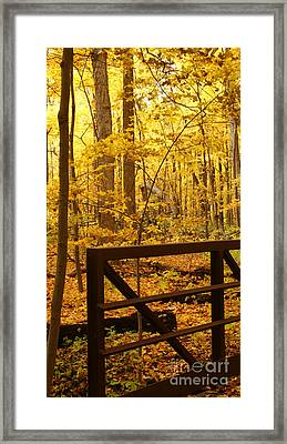 Autumn Bridge Iv Framed Print by Valerie Fuqua